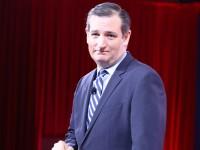 Cruz welcomes Bush to presidential campaign