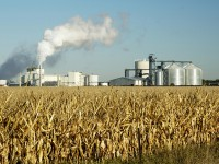 State to launch new biofuels initiative with USDA grant